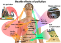 Health effects of pollution.png